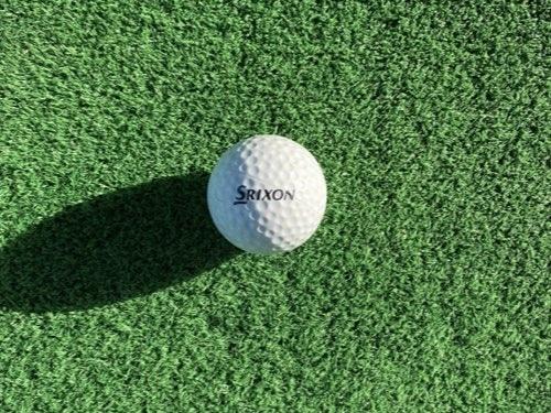 井山ゴルフ練習場のボール